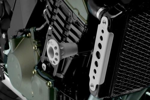 Fregi laterali radiatore